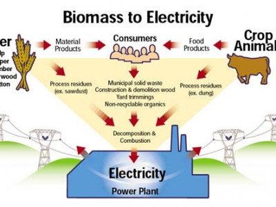 Images Of Biomass Energy Diagram Spacehero